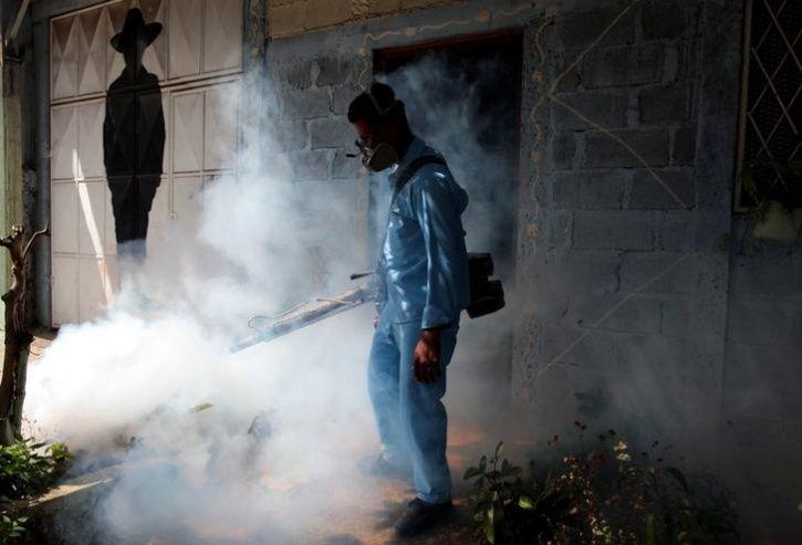 You Can Get Dengue Malaria Chikungunya At The Same Time