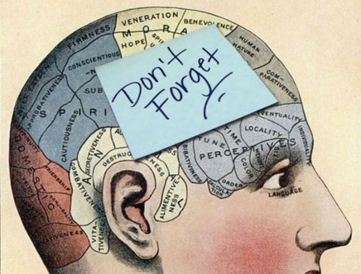 5 Memory Skills That Can Make You Smarter