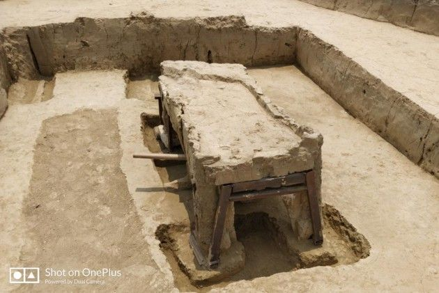ASI, Sanauli findings,Sanjay Manjul, Bronze age,