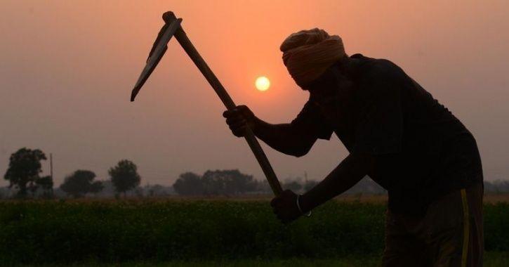 F farmer
