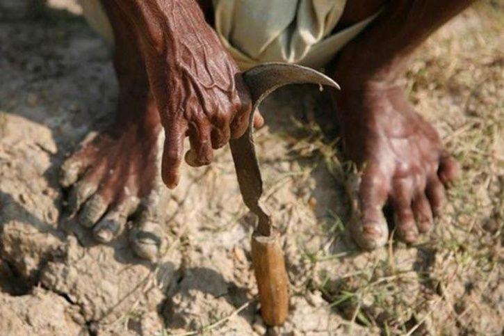 Farmers Commit Suicides