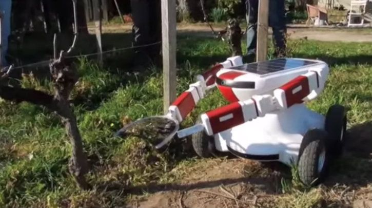 Farming robot in agriculture ai