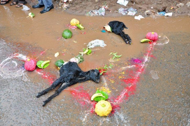 superstition, suicide, burari, Hamid Dabholkar