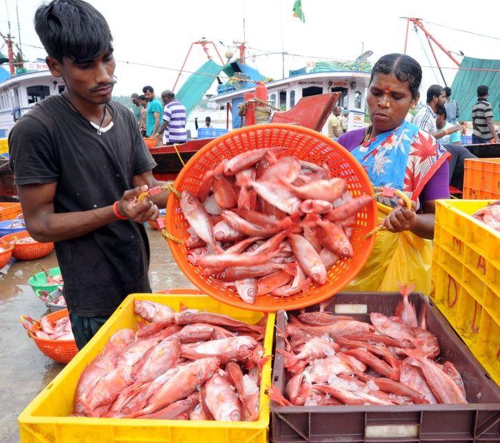 Kerala Fish