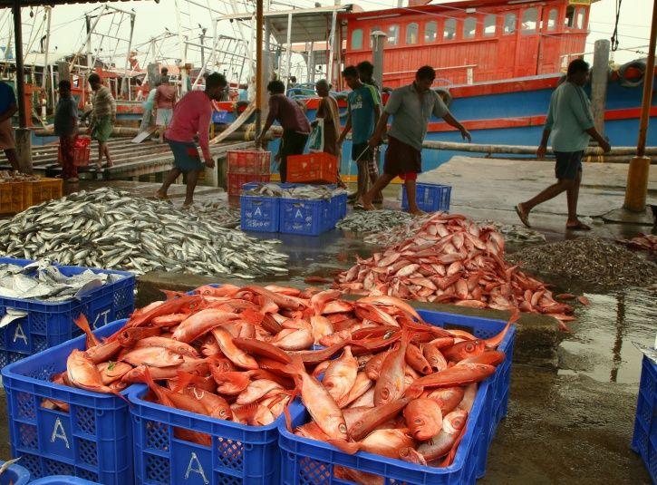 Kerala Fishermen