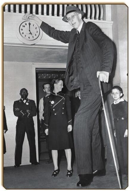 Tallest