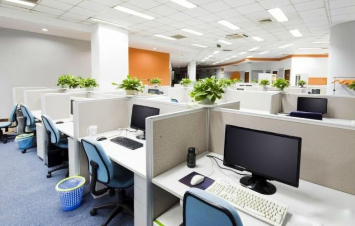 5 Basic Areas Any Workplace Needs To Look Into To Promote The Well Being Of Their Employees
