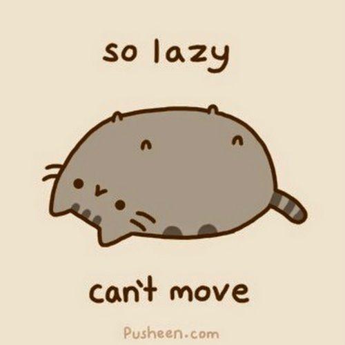 lazy person man woman cat