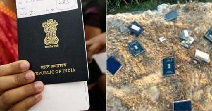passports dump