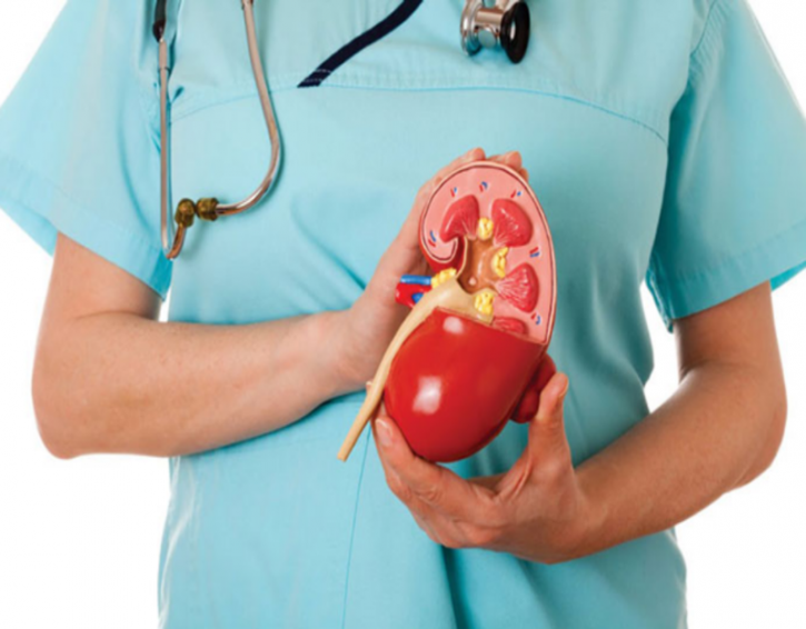 World Kidney Day: What You Need To Know About Kidney Disease And How You Can Prevent It