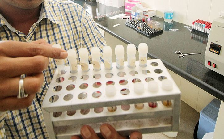 Man Files RTI Plea To Know Blood Group After Tests Throw Up Different Results
