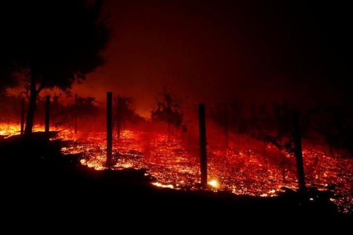 Deadly California Fire3