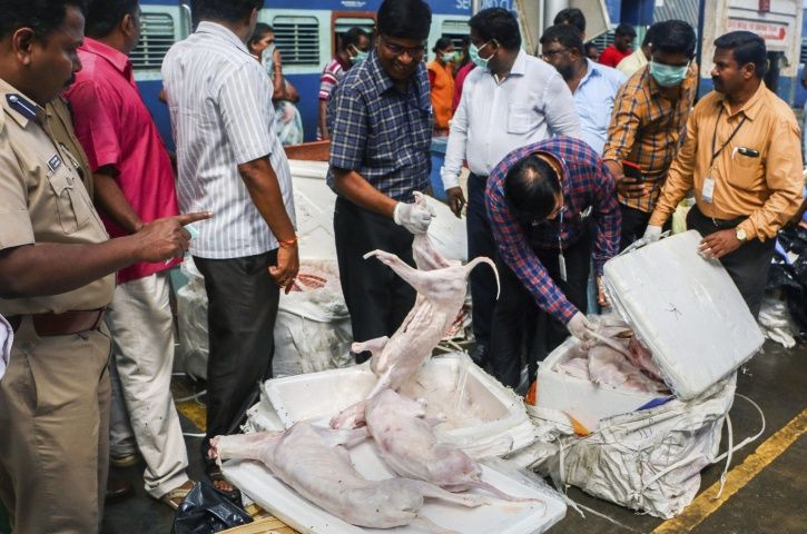 dog meat, Chennai, Egamore railay station, police officials, Rajasthan, city hotels