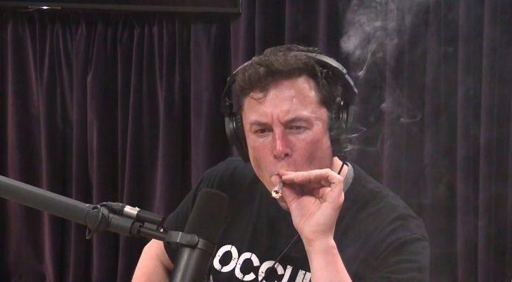 Elon Musk weed