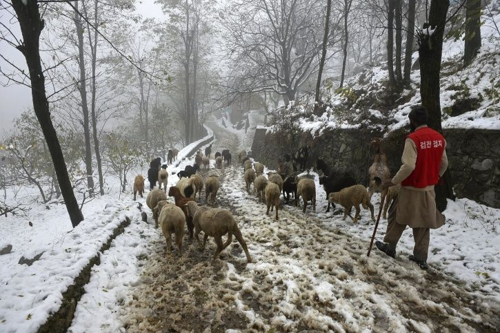 Jammu and Kashmir, snowfall, 700 people, landslide, anantnag, rajouri, Banihal