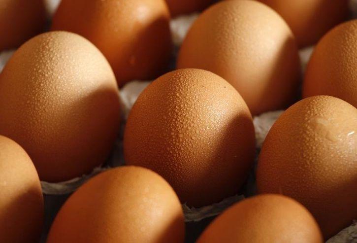 Man steal eggs