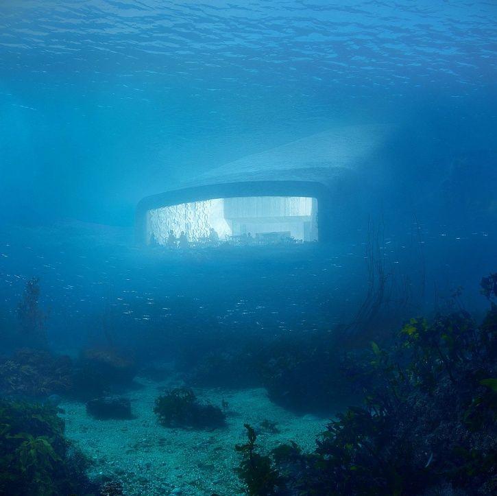 Underwater restaurant, Under