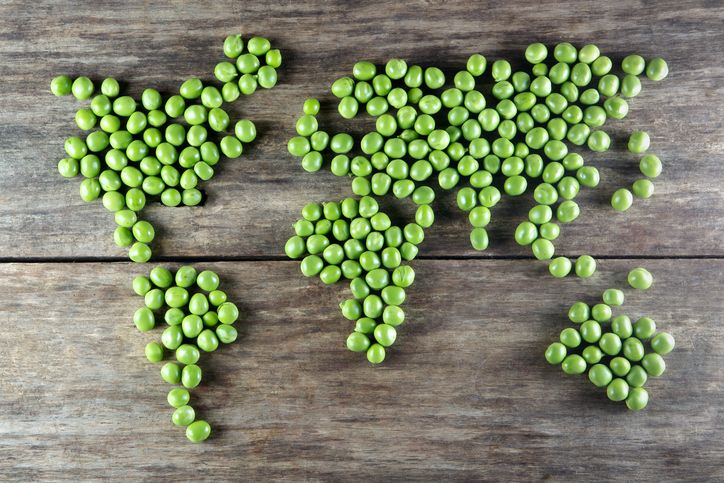 Are We Slowly But Surely Heading Towards A Meat Free Future?