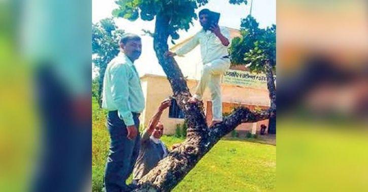 Shaky Internet Forces Teachers To Climb Trees