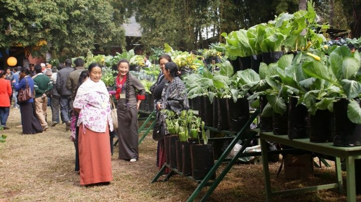 Sikkim, Organic State, future policy award 2018, gold prize, UN, Rome, Food and agricultural organis
