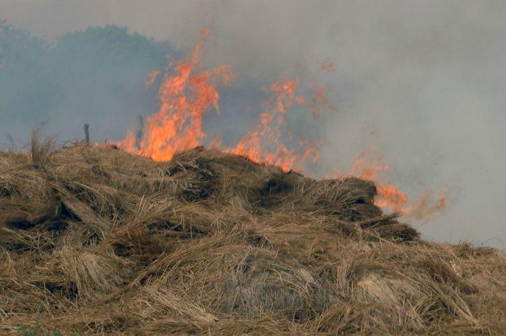 Stubble Burning Pollution