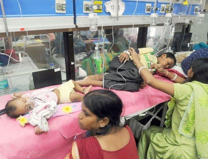 With 488 Cases In A Week, 169 From Delhi Alone, Here's Everything You Need To Know About Dengue