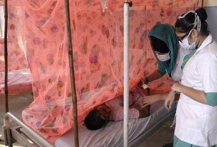 Zika Virus Rajasthan
