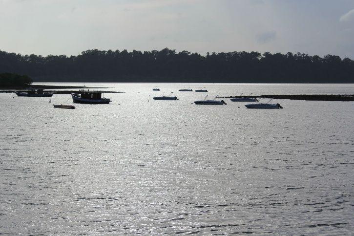 Andaman and Nicobar Islands, Havelock, Zero data, internet connectivity, Port Blair, online shopping