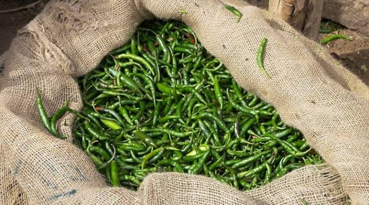 From Weight Loss To Fighting Off A Cold, Here's Why Green Chilies Are A Must In Your Diet