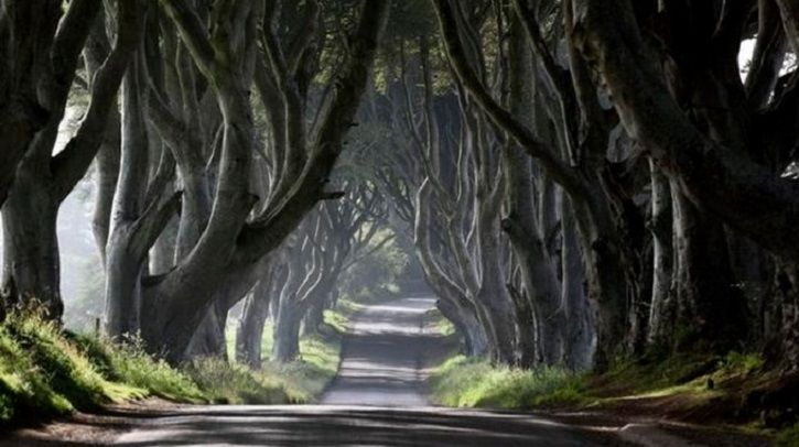 'Game Of Thrones' To Soon Become Tourist Attraction, Now You Step Inside The World Of Ice & Fire
