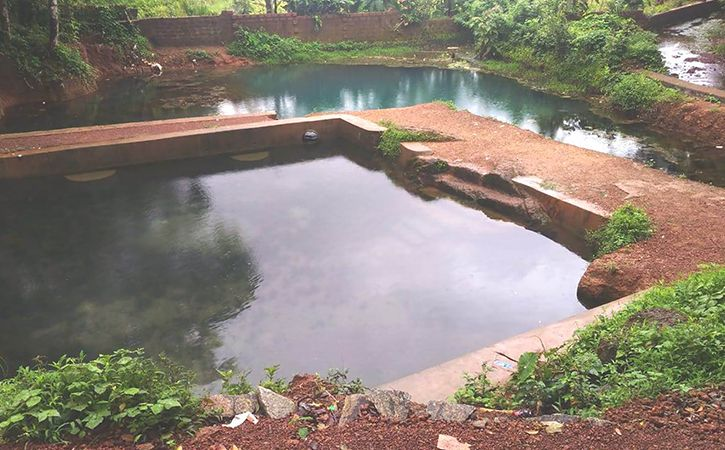 Small Town Endeavour On Lake Regeneration In Karnataka Results In Big Time Success