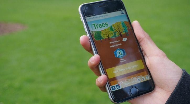 NASA trees app