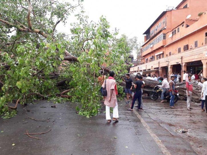 Rajasthan, Madhya Pradesh, Gujarat, Unseasonal rain, 35 people killed, India