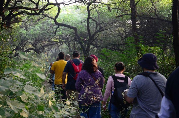 Ridge Forest, New Delhi, patrolling, protection, tractors, private guards, equipment