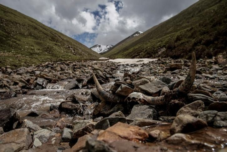 Chinese mountains get hotter17
