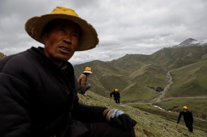 Chinese mountains get hotter1