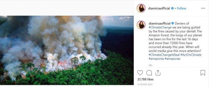 Dia Mirza on Amazon rainforest fire.