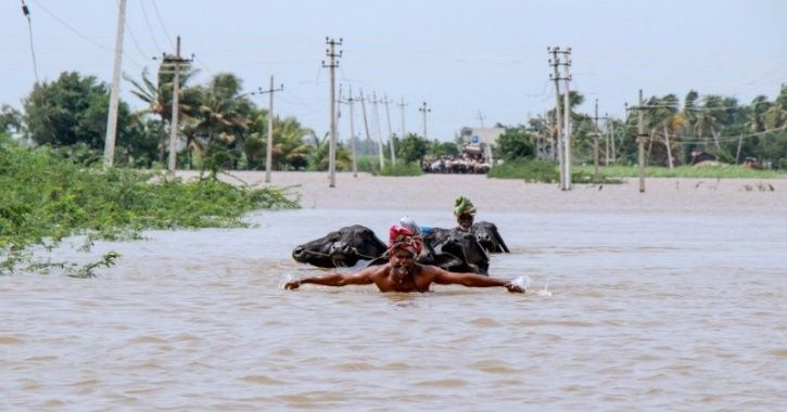 Karnataka Boy Swims For 2.5Km In Floodwater To Meet The Team For Wrestling Event, Bags Silver
