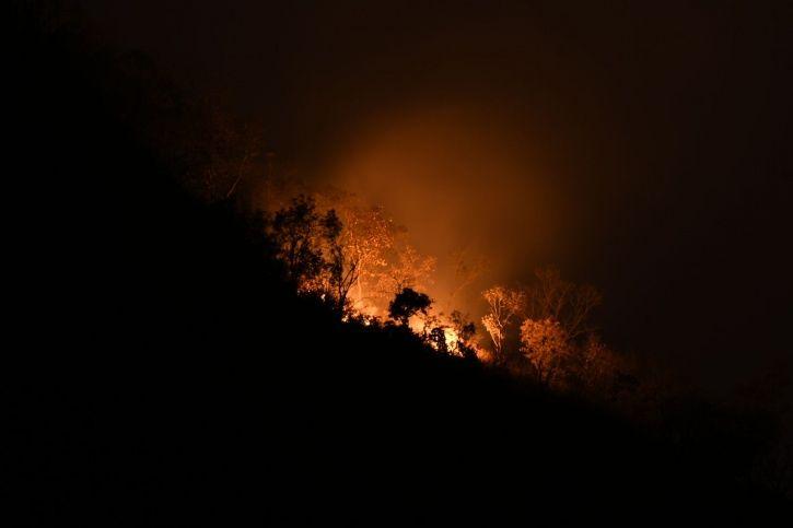 Bandipur Wildfire