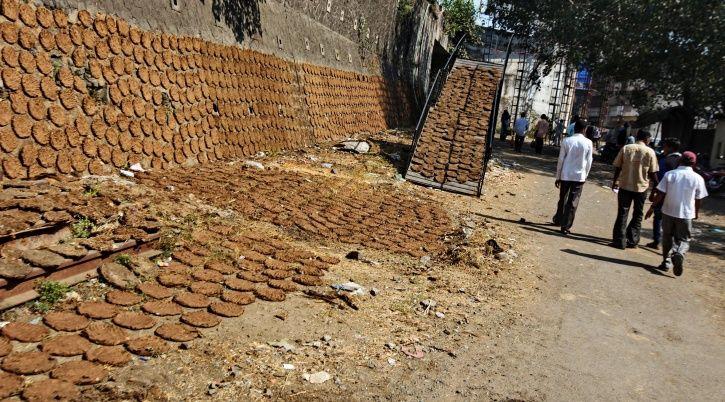 cow dung, Karnataka, Birur, Rs 1.25 lakh, theft, animal husbandry, police