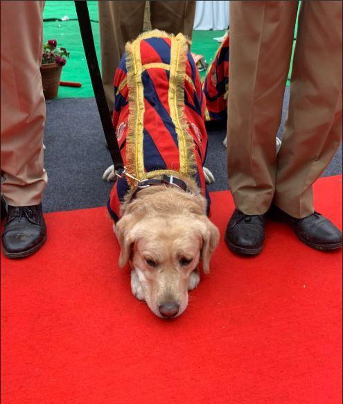 CRPF sniffer dog