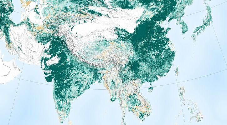 India China greenery