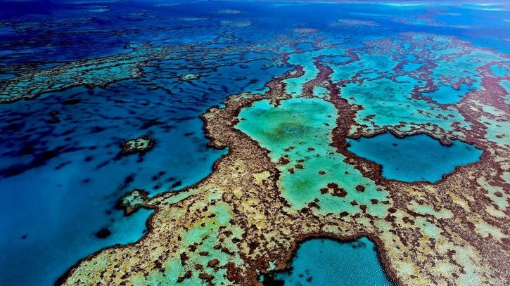 Oceans Won't Be The Same Colour By The Year 2100, Courtesy Climate Change