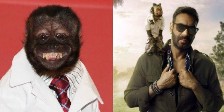 Crystal Monkey