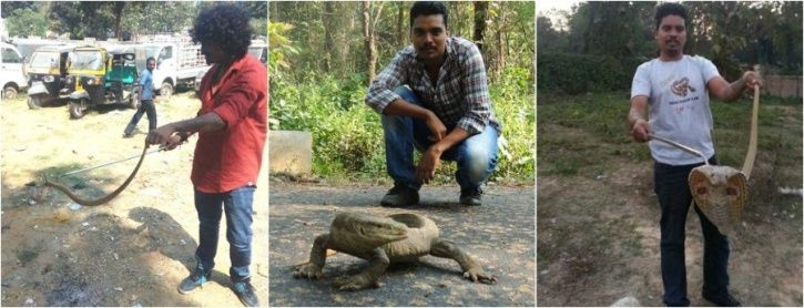 How Odisha Prepared And Saved Its Wildlife In The Aftermath Of Disastrous Cyclone Fani