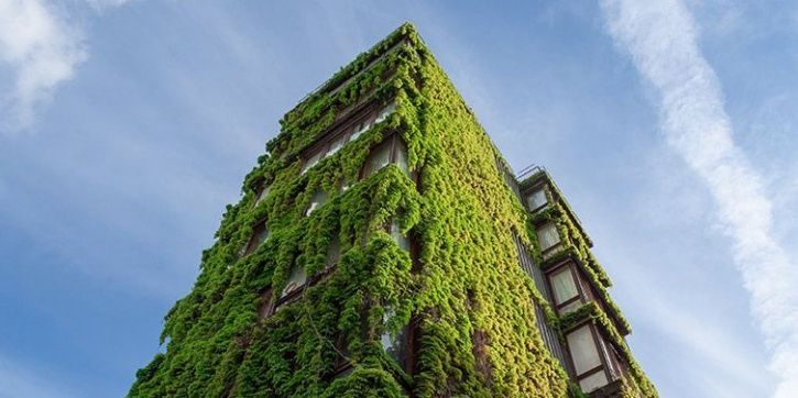 As India Moves Towards Eco-Friendly Structures, Only 4% Buildings In The Country Are 'Green'