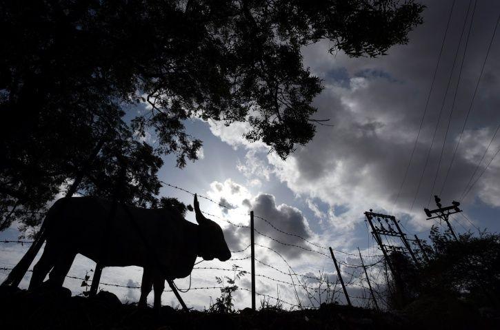 Chhattisgarh, Jhalpi Para, electricity, residents, Saubhagya bijli yojana, Modi