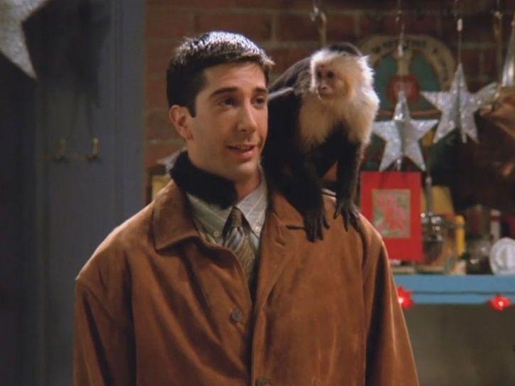 Sorry FRIENDS Fans, Ross Wasn't Fond Of Marcel The Monkey, Says Matt LeBlanc AKA Joey