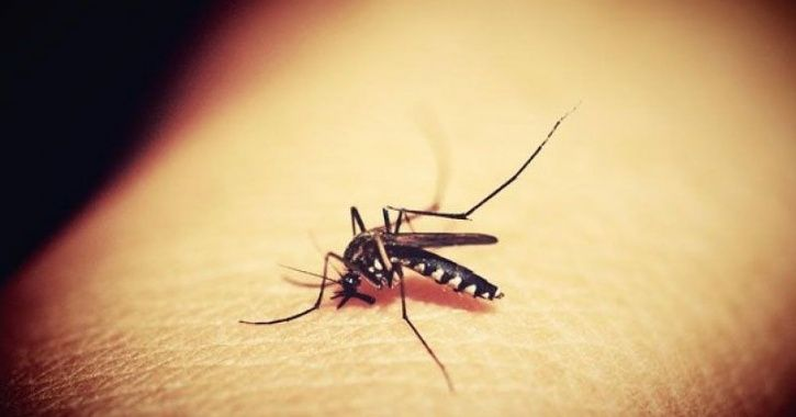 first malaria vaccine