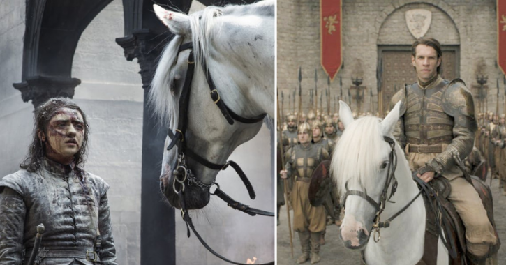 Game of Thrones episode 5: The White Horse that appeared in the end was Harry Strickland's horse.
